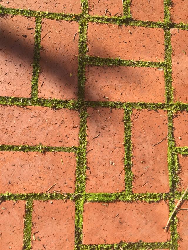 Brick grass lines